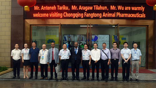 Warmly Welcome Mr. Anteneh Tariku, the Acting Consul General of Consulate General of Ethiopia in Chongqing and his team to Visit Fangtong.
