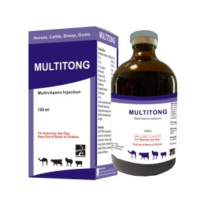 MULTITONG Multivitamin Injection
