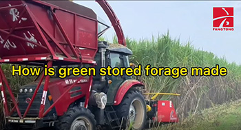 How is green stored forage made