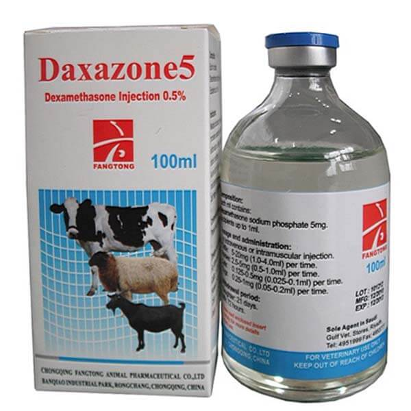 New Fashion Design for Oxytetracycline Injection 20% For Camel Cattle -
