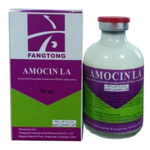Amoxicillin suspension 20%