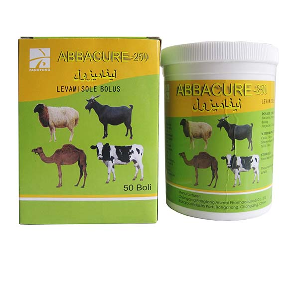 Manufacturer of Veterinary Use Oxytetracycline Long Acting Injection - Levamisole bolus 250mg – Fangtong