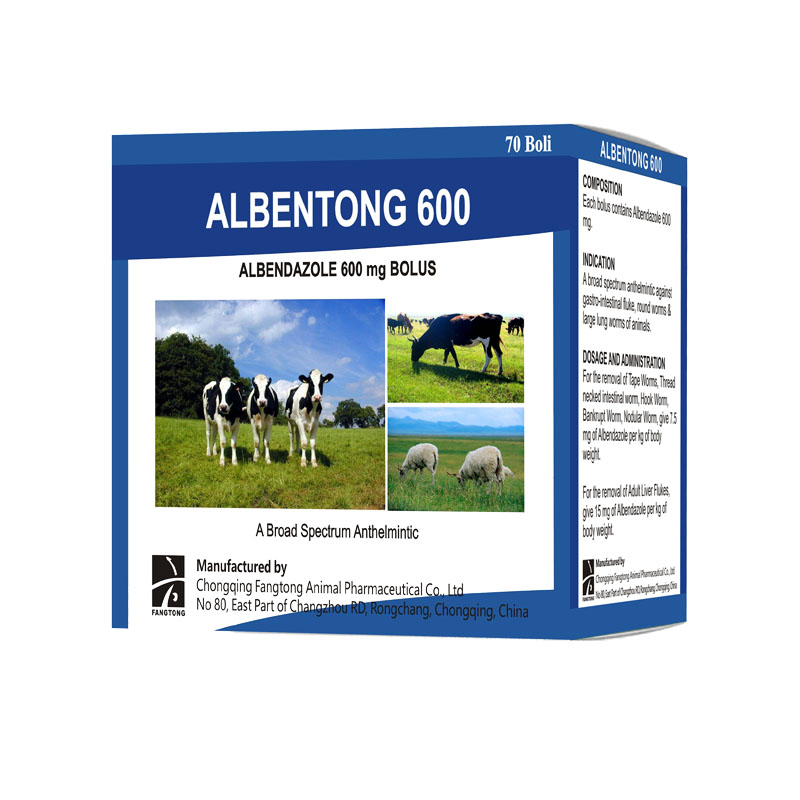 ALBENTONG 600 albendazole bolus 600mg Featured Image