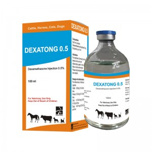 Dexamethasone injection 0,5%