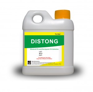 DISTONG  Glutaral and Deciquan Solution 5%