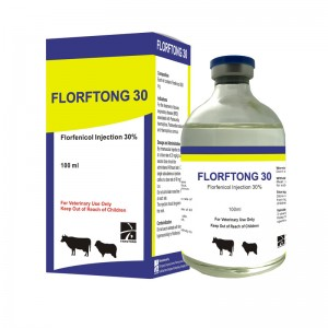 FLORFTONG 30 Flofenicol Injection 30%